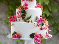 Elegant White Cake with Fresh Flowers